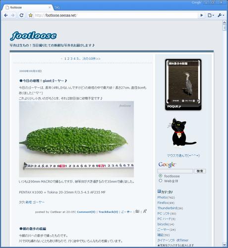20080903_googlechrome.png
