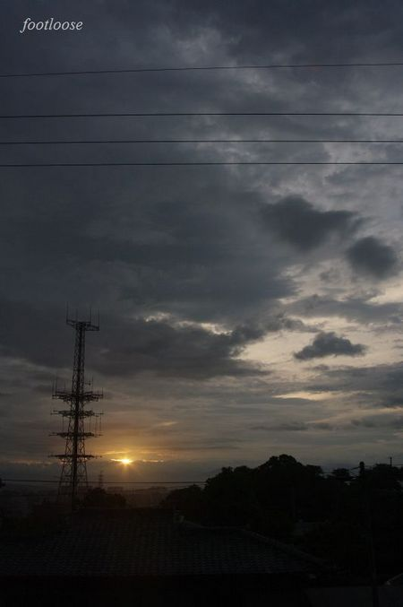 20090729_020.jpg