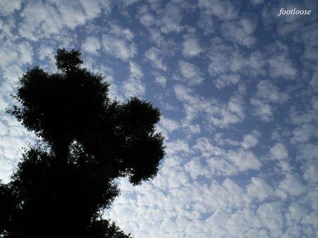 20090925_137.jpg