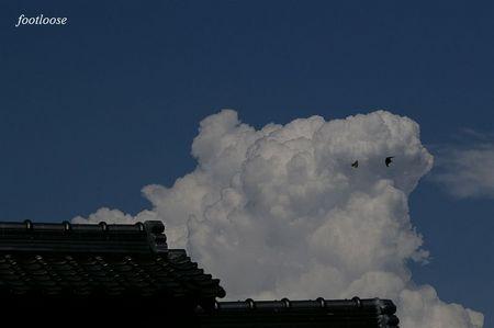 20080727_091.jpg