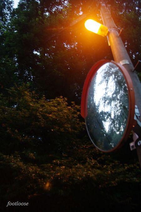 20090729_004.jpg